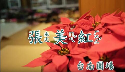 【協會人物專訪有聲書】張美紅師姐的生命故事