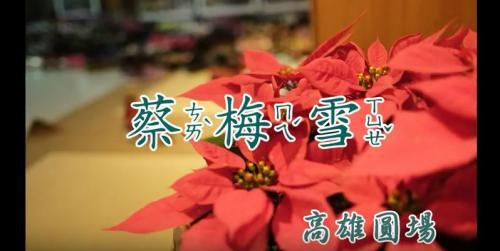 【協會人物專訪有聲書】蔡梅雪師姐的生命故事